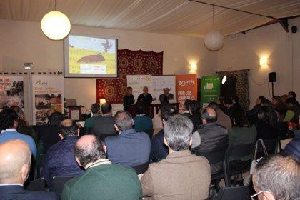 """Una jornada de Cooperativas Agro-alimentarias apunta a la unión del sector del vacuno de carne """"como salvaguarda"""""""