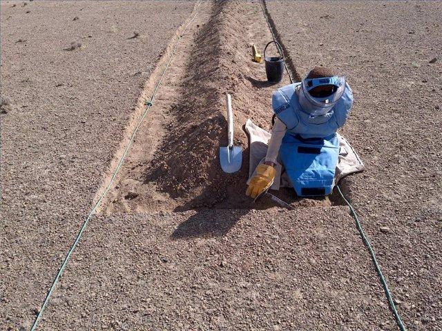 EEUU.- EEUU levanta la prohibición sobre el uso de minas antipersona para garant
