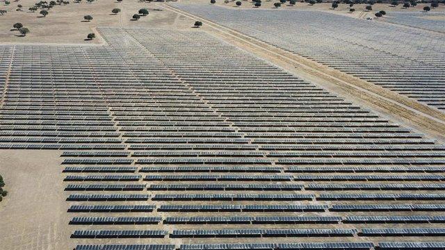 Imagen de una instalación de Endesa de paneles fotovoltaicos.