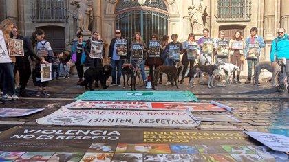 """Una concentración en Pamplona censura el """"maltrato y abandono"""" a los perros de caza"""