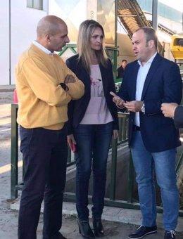 Huelva.- Cs destaca el beneficio al olivar de la ampliación de la promoción inte