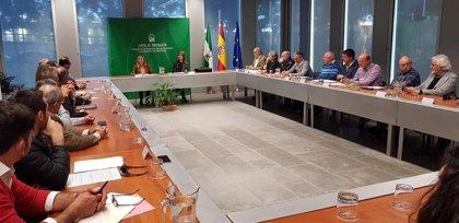 """Carazo defiende la """"seguridad jurídica"""" del decreto ley de viviendas irregulares y niega """"conflicto de competencias"""""""