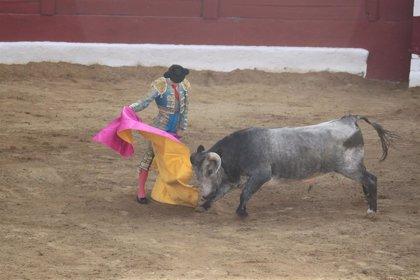 """Fundación del Toro de Lidia estudia acciones legales ante """"un nuevo caso de acoso"""" en Algeciras (Cádiz)"""