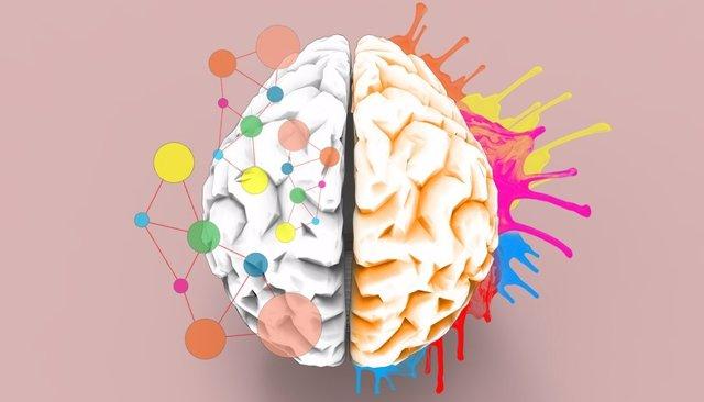 Sinestesia, cerebro con colores.