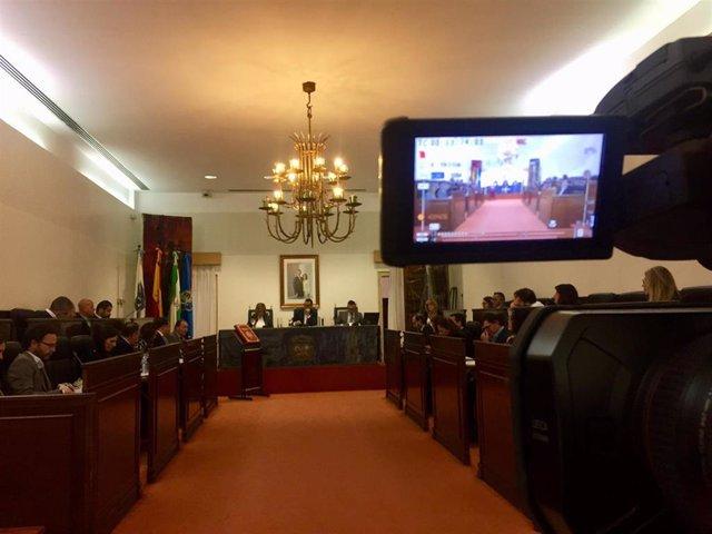 Nota De Prensa Y Fotos De Hoy, 5 De Febrero, Pleno De La Diputación De Huelva