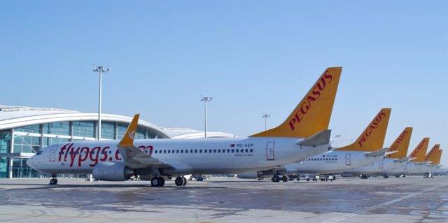 Avions de l'aerolínia Pegasus (arxiu)