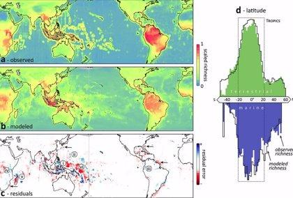 Primer Mapa Que Unifica La Biodiversidad Terrestre Y Oceanica