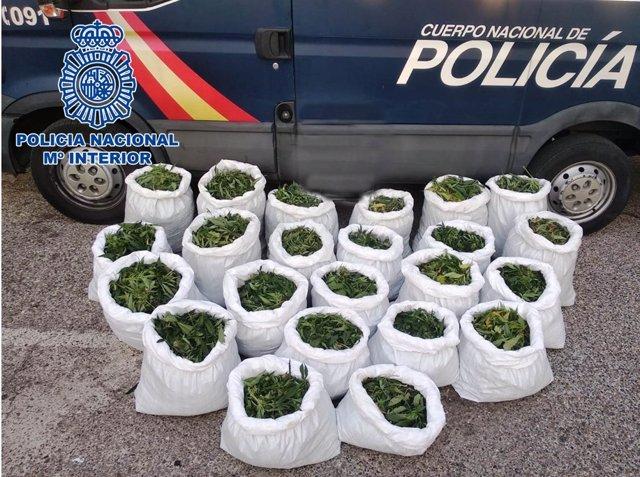Marihuana incautada por la Policía Nacional en La Carlota (Córdoba).