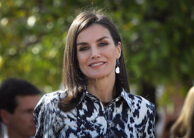 La reina Letizia presidirá en la UPV la proclamación del Premio Fundación Prince
