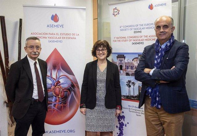 Asociación para el Estudio de la Medicina Vascular en España