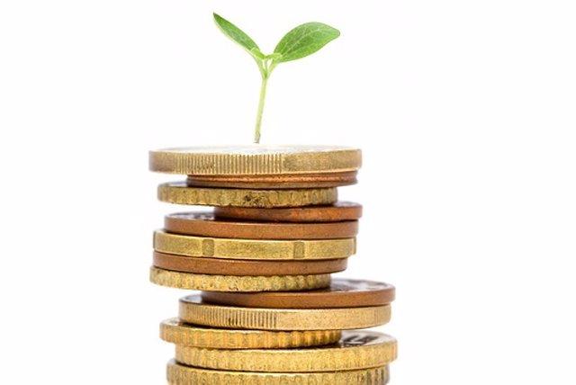 Finanzas sostenibles, cultivo, dinero, sostenibilidad, bono verde