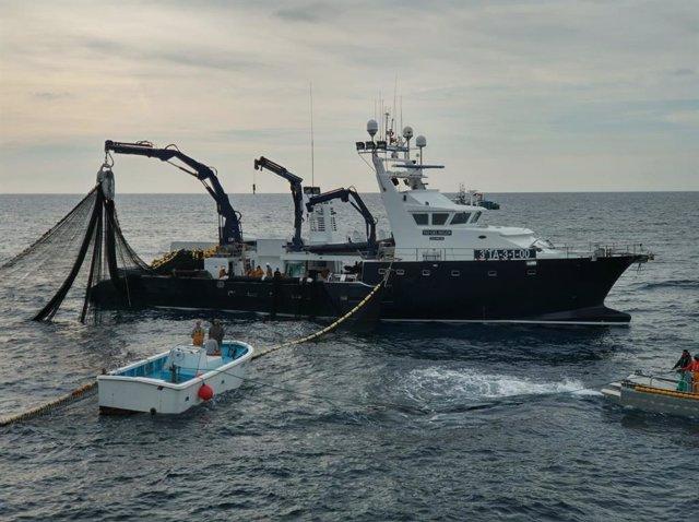 Campanya de pesca de tonyina vermella de Balfegó (Arxiu)