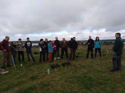 El Ayuntamiento de Arroyo de la Luz planta casi 3.000 árboles para combatir  el cambio climático