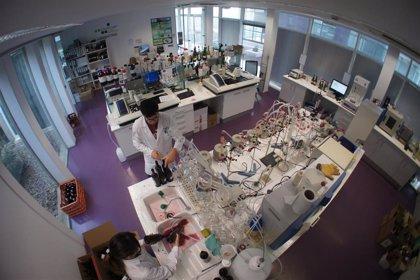 Dolmar, primer laboratorio riojano acreditado por ENAC para el Programa de ensayos de control y de Exportación de Vinos