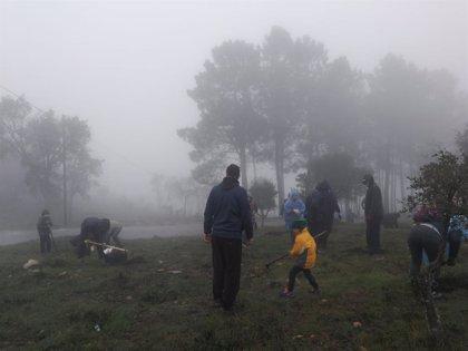 El programa Plantabosques de Adenex cruza la frontera con Portugal para repoblar la sierra de Sao Mamede