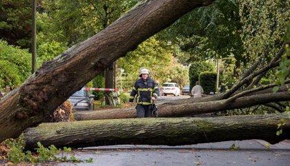 Europa.- El norte de Europa se prepara para la tormenta Ciara, que dejará fuertes vientos y lluvias