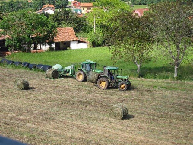 Trabajos en el campo. Rural. PAC. Agricultura.