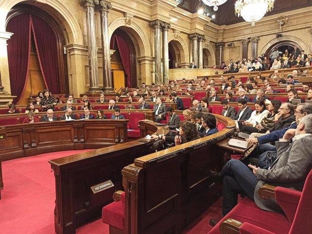 Ple del Parlament del 5 de febrer del 2020