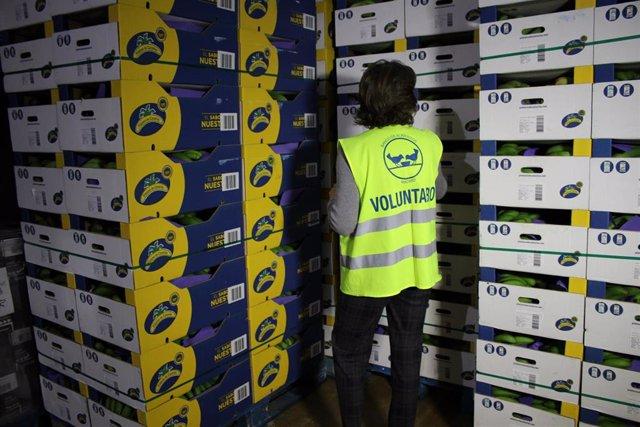 Más de un millón de plátanos se donarán a la FESBAL
