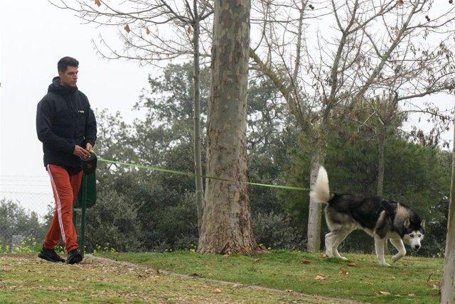 Diego Matamoros se refugia en su mascota durante su crisis matrimonial con Estela Grande