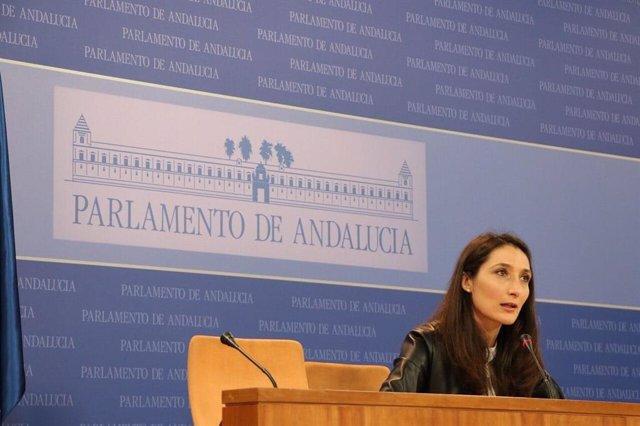 La portavoz adjunta del grupo parlamentario de Ciudadanos (Cs), Mónica Moreno, en rueda de prensa en el Parlamento.