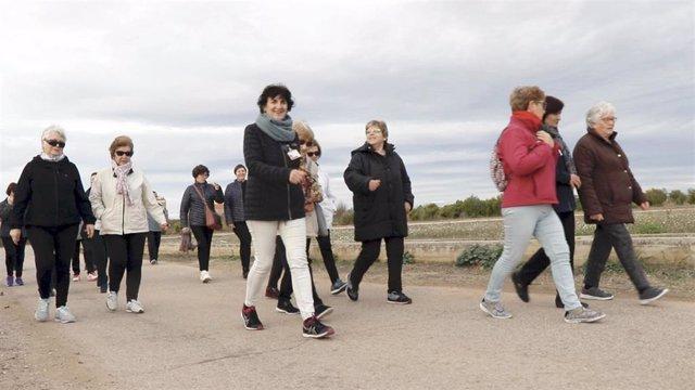 Proyecto 'Caminante' en Alcàsser (Valencia)