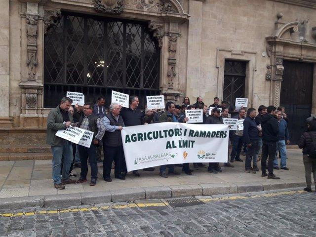 Asaja, Unió de Pagesos y AIA-UPA concentrados en Cort para pedir al alcalde de Palma que asuma la deuda del matadero.