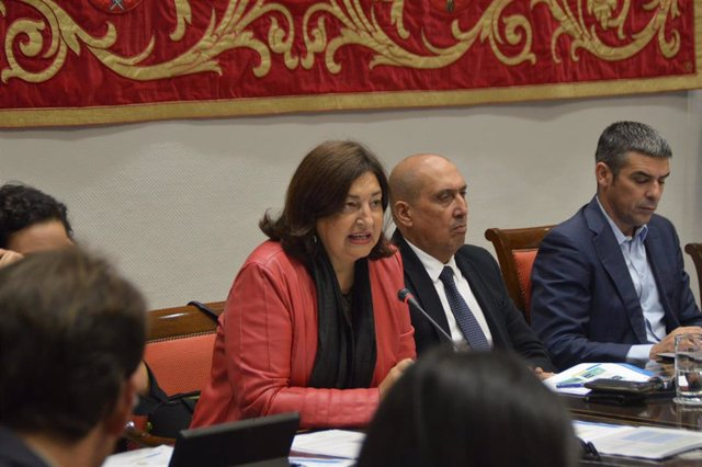 La consejera de Educación del Gobierno de Canarias, María José Guerra, en la presentación de los presupuestos en comisión parlamentaria