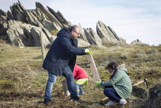 Montemadrid completa la primera fase de 'ReforestaAcción' por el que se han plantado 1.350 árboles en la Sierra Norte