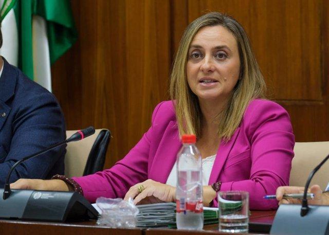 La consejera de Fomento, Infraestructuras y Ordenación del Territorio, Marifrán Carazo, en una imagen de archivo, asiste al corte de tráfico.