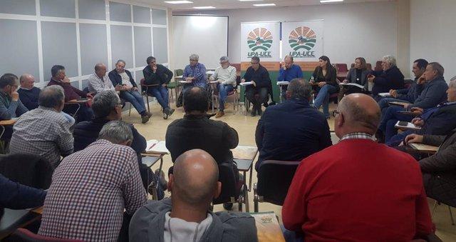 Consejo Regional de UPA-UCe