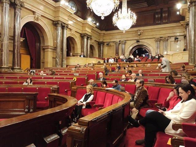 Ple del Parlament, 13 de febrer del 2020.