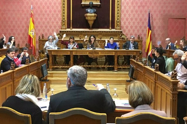 Votación en el pleno del Consell de Mallorca de este jueves.