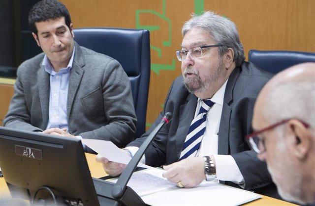 El ararteko, Manuel Lezertua, en una comparecencia en comisión del Parlamento Vasco