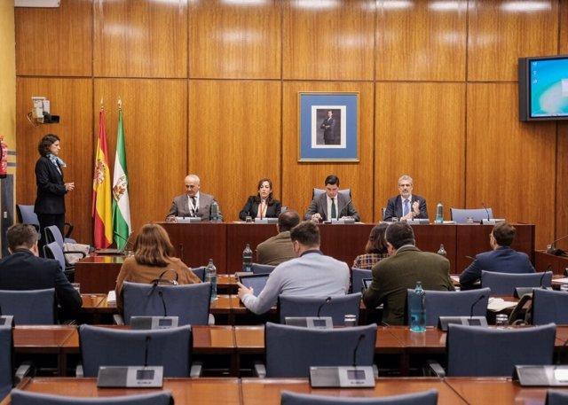 Comparecencia de Ana María Riego en la comisión de investigación de la Faffe.
