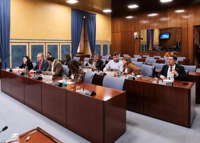 Diputados en la comisión de investigación de la Faffe en el Parlamento andaluz.