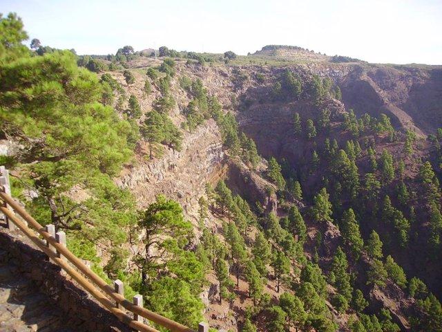 Sendero en Tenerife