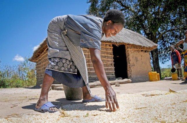 Zambia.- De mirar al cielo a escuchar la radio para combatir el cambio climático