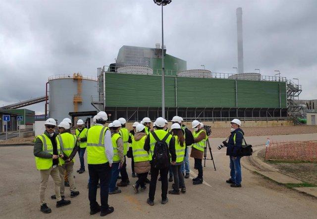 Planta de biomasa en Puertollano