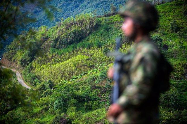 Imagen de un combatiente del Ejército de Liberación Nacional (ELN) de Colombia.