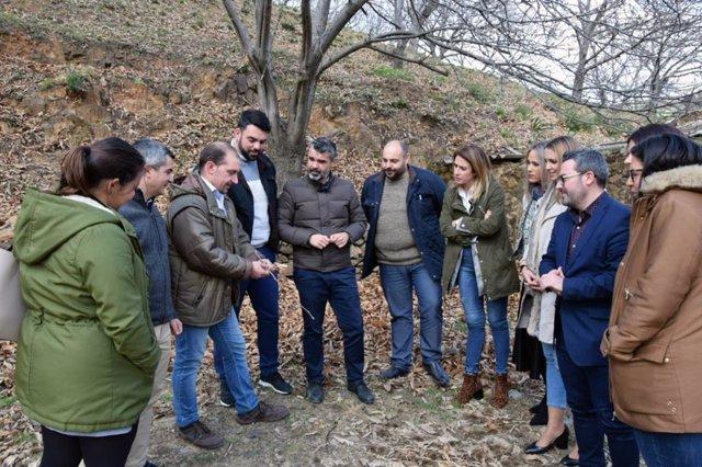 Málaga.-PSOE pide a Diputación ayudas para compensar a agricultores por la merma