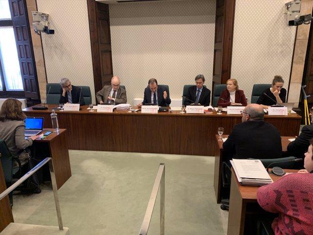 El síndic de Greuges, Rafael Ribó, ha comparecido en comisión parlamentaria para informar sobre las actuaciones en materia de salud