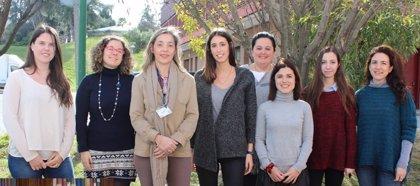 Investigadores españoles descubren el papel protector de la proteína PTP1B en ratones con esteatohepatitis no alcohólica