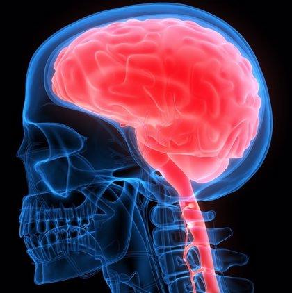 Experta señala que el diagnóstico y tratamiento precoz pueden evitar muchas secuelas de la encefalitis