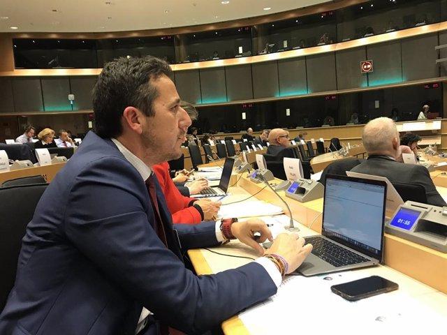 El diputado del PP Víctor Píriz interviene en el Parlamento Europeo