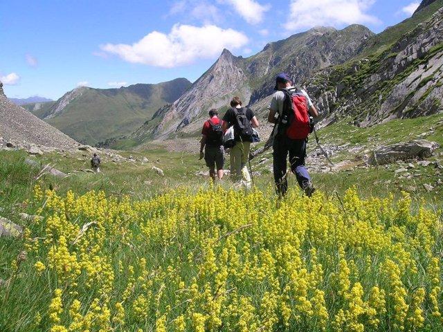 Pirineu catal, muntanya, excursió, natura.