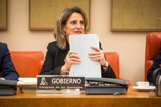 La vicepresidenta para la Transición Ecológica y el Reto Demográfico, Teresa Ribera, en la comisión del ramo en el Congreso