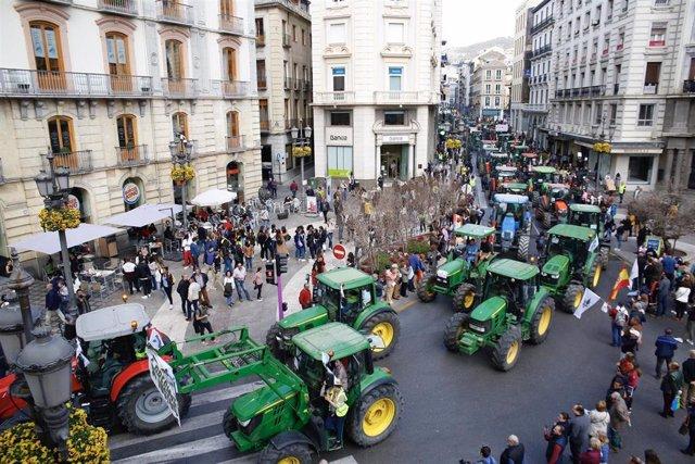 Imagen de la tractorada a su paso por Puerta Real, en Granada capital