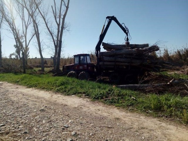 Treballs d'adequació al riu Francolí a Tarragona
