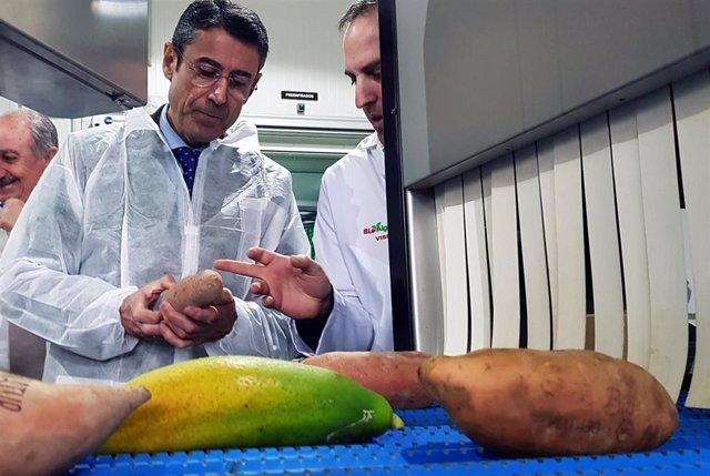 El delegado territorial de Agricultura, Ganadería, Pesca y Desarrollo Sostenible, Fernando Fernández Tapia-Ruano, visita las instalaciones de Bioalgarrobo.